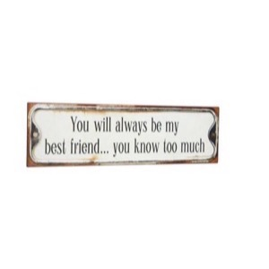 Metal skilt 51x15cm You Will Always Be My Best Friend...You Know Too Much - Se flere Metal skilte