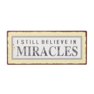 Metal skilt 31x13cm I Still Believes In Miracles - Se flere Metal skilte