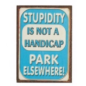 Stupidity Is Not A Handicap - magnet 5x7cm